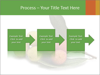 0000062889 PowerPoint Templates - Slide 88