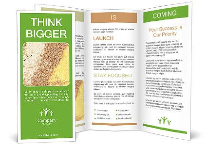 0000062895 Brochure Templates