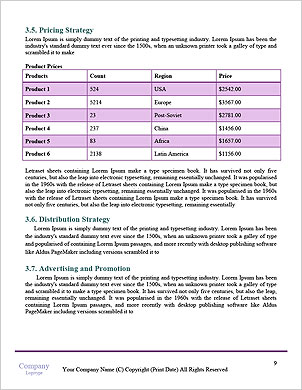 0000062902 Word Template - Page 9