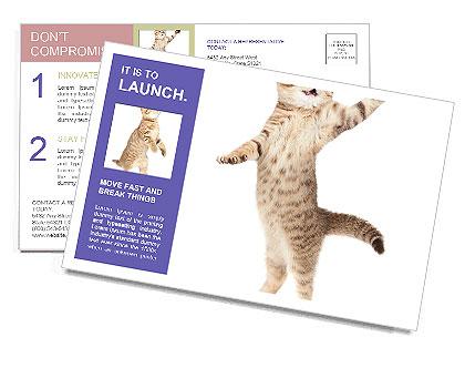 0000062904 Postcard Template