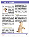 0000062904 Word Template - Page 3