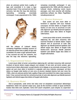 0000062904 Word Template - Page 4