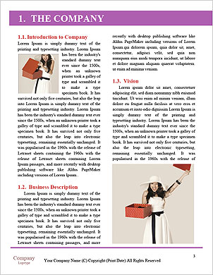 0000062920 Word Template - Page 3