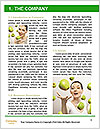 0000062933 Word Template - Page 3