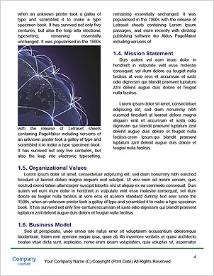 0000062943 Word Template - Page 4