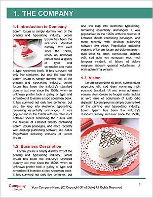 0000062944 Word Template - Page 3