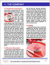 0000062947 Word Templates - Page 3