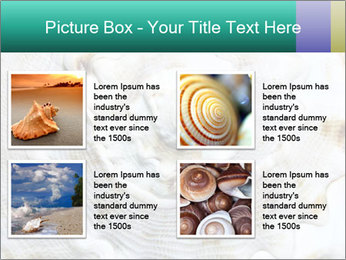 0000062955 PowerPoint Template - Slide 14