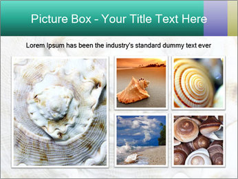 0000062955 PowerPoint Template - Slide 19