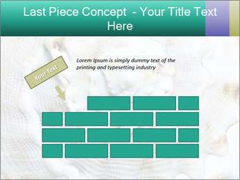 0000062955 PowerPoint Template - Slide 46