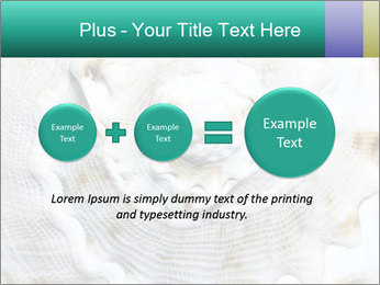 0000062955 PowerPoint Template - Slide 75
