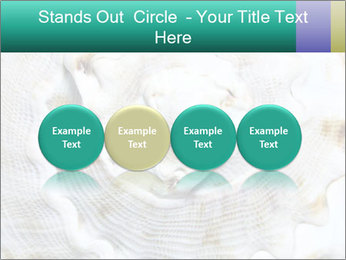 0000062955 PowerPoint Template - Slide 76