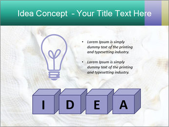 0000062955 PowerPoint Template - Slide 80