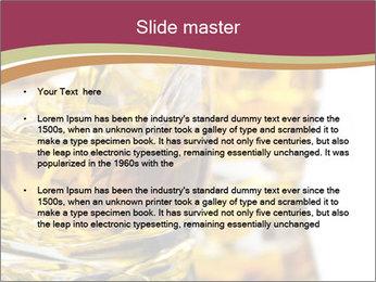 0000062964 PowerPoint Template - Slide 2
