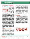 0000062979 Word Template - Page 3