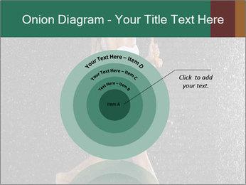 0000062989 PowerPoint Template - Slide 61