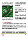 0000063001 Word Templates - Page 4