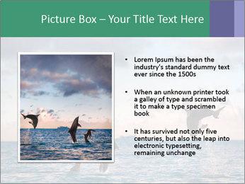 0000063008 PowerPoint Templates - Slide 13