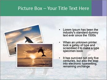 0000063008 PowerPoint Templates - Slide 20