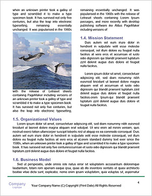 0000063008 Word Template - Page 4