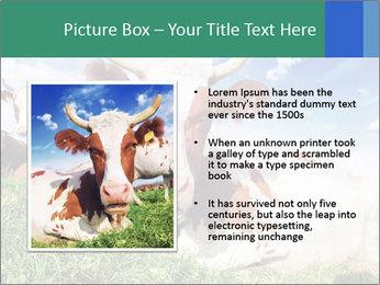 0000063012 PowerPoint Template - Slide 13