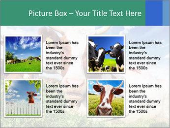 0000063012 PowerPoint Templates - Slide 14