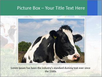 0000063012 PowerPoint Templates - Slide 15