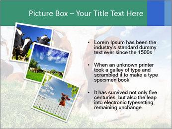 0000063012 PowerPoint Template - Slide 17