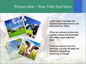 0000063012 PowerPoint Templates - Slide 23