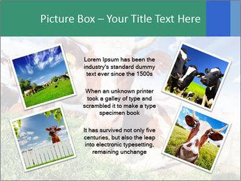 0000063012 PowerPoint Templates - Slide 24