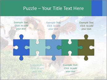 0000063012 PowerPoint Templates - Slide 41