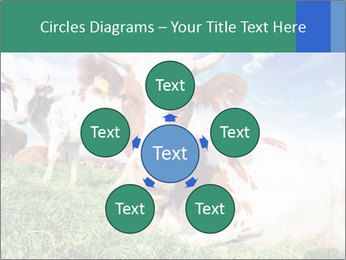0000063012 PowerPoint Templates - Slide 78