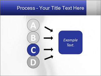 0000063014 PowerPoint Templates - Slide 94