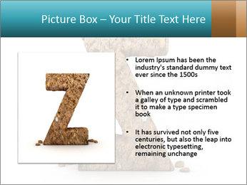 0000063023 PowerPoint Templates - Slide 13