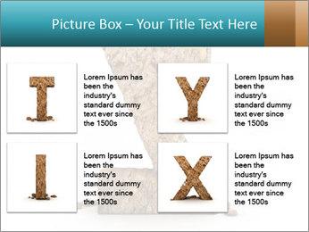0000063023 PowerPoint Templates - Slide 14