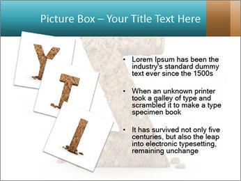 0000063023 PowerPoint Templates - Slide 17