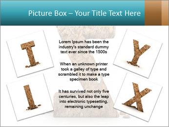 0000063023 PowerPoint Templates - Slide 24