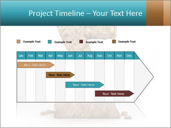 0000063023 PowerPoint Templates - Slide 25