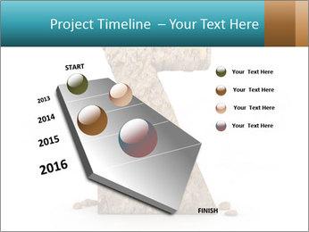 0000063023 PowerPoint Templates - Slide 26