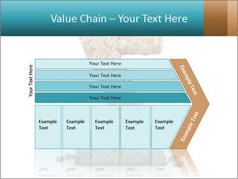 0000063023 PowerPoint Templates - Slide 27