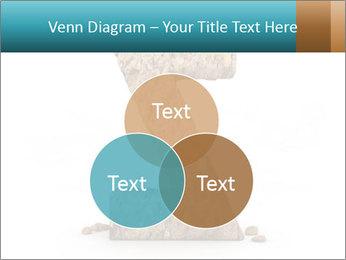 0000063023 PowerPoint Templates - Slide 33