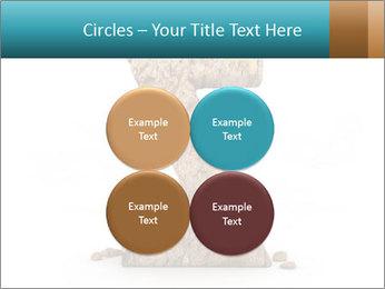 0000063023 PowerPoint Templates - Slide 38