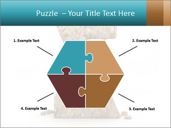 0000063023 PowerPoint Templates - Slide 40
