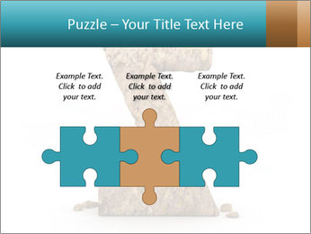 0000063023 PowerPoint Templates - Slide 42