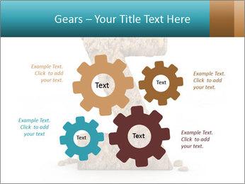 0000063023 PowerPoint Templates - Slide 47