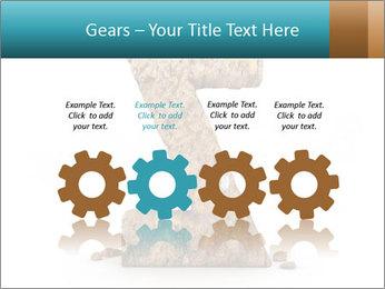 0000063023 PowerPoint Templates - Slide 48