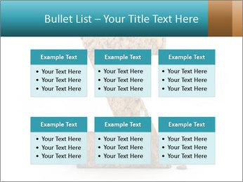 0000063023 PowerPoint Templates - Slide 56