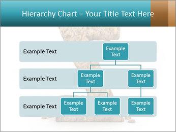 0000063023 PowerPoint Templates - Slide 67