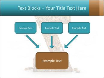 0000063023 PowerPoint Templates - Slide 70