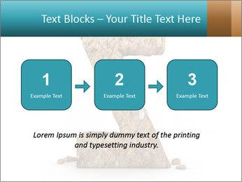 0000063023 PowerPoint Templates - Slide 71